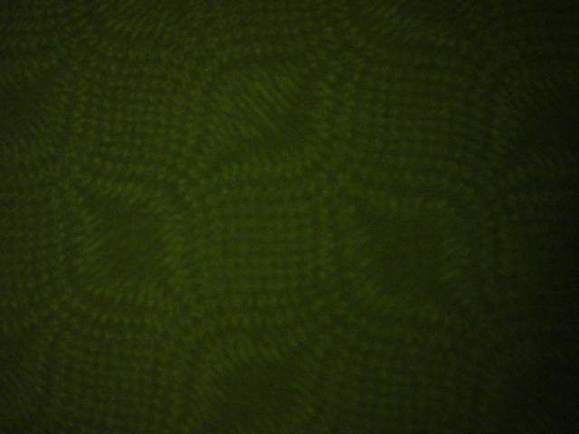 Christmas Green-christmas, green, tonal, design