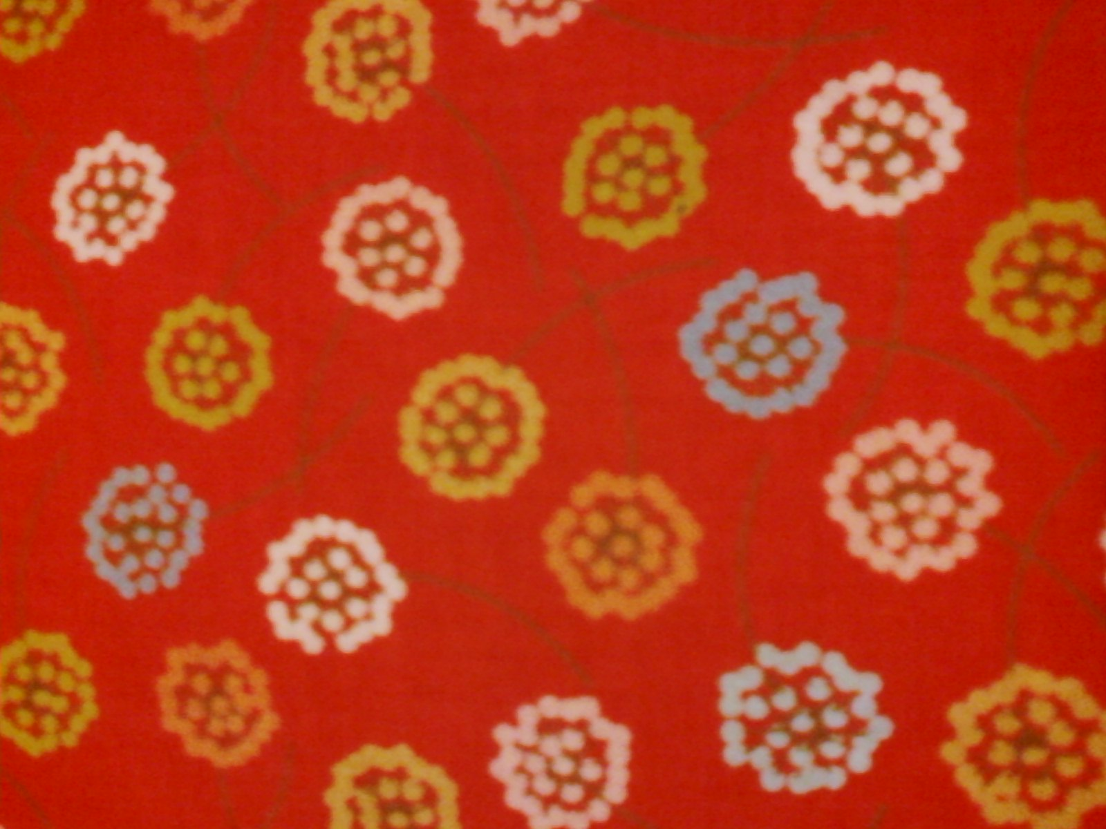 Wrens Friends Orange with Flowers-wrens friends gina martin moda orange tangerine flowers